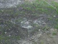модификация почвы