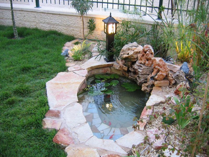 Небольшой декоративный бассейн срыбками.