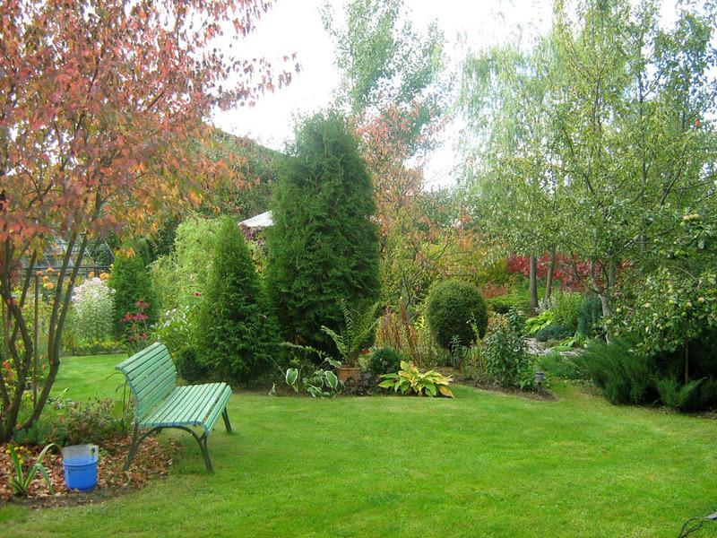 Мой сад в начале осени